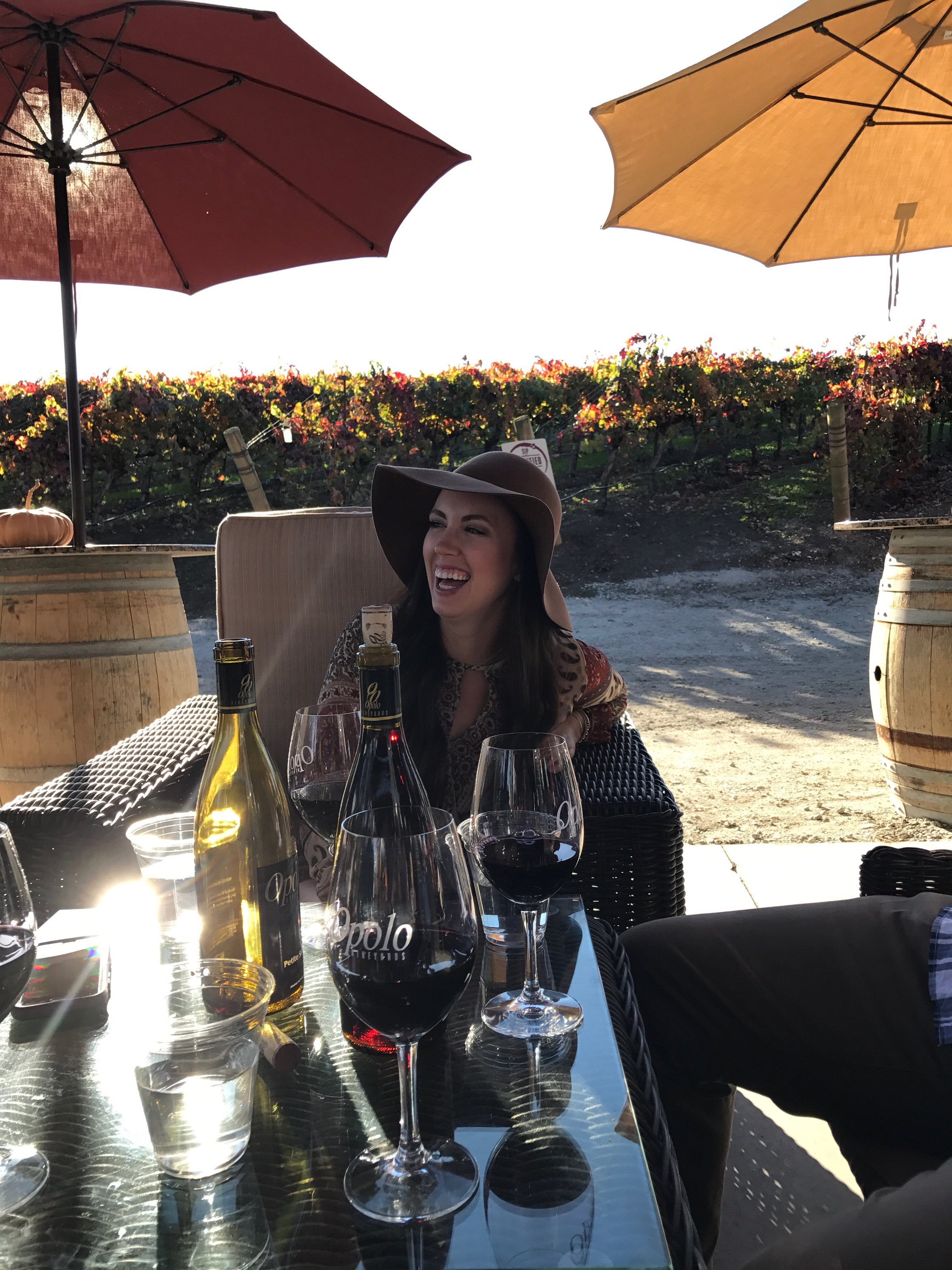 Opolo Winery Paso Robles California Wine Country affordable weekend trip